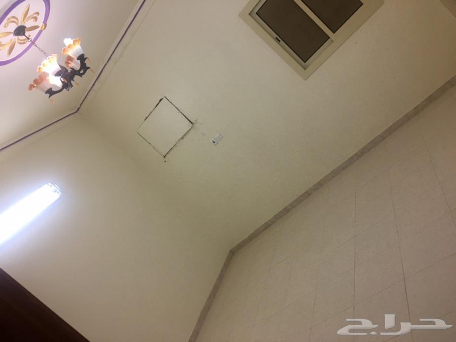 شقة للإجار