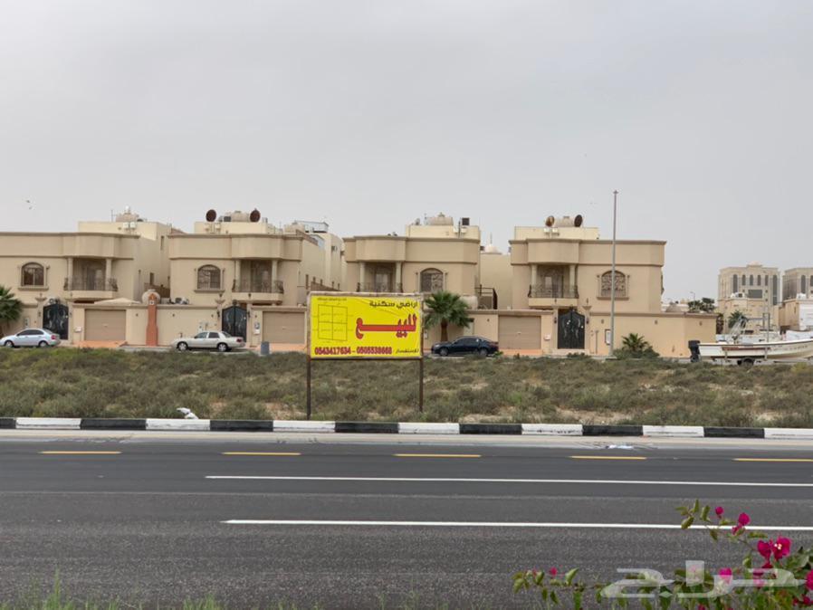 بدأ الحجز.. أراضي للبيع بحي الشاطي الدمام