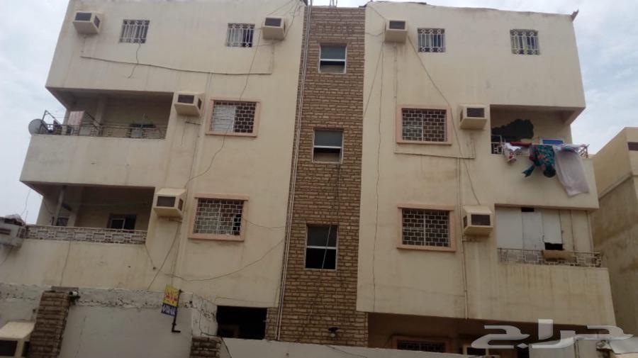 شقة للايجار في حي الجامعة في جده