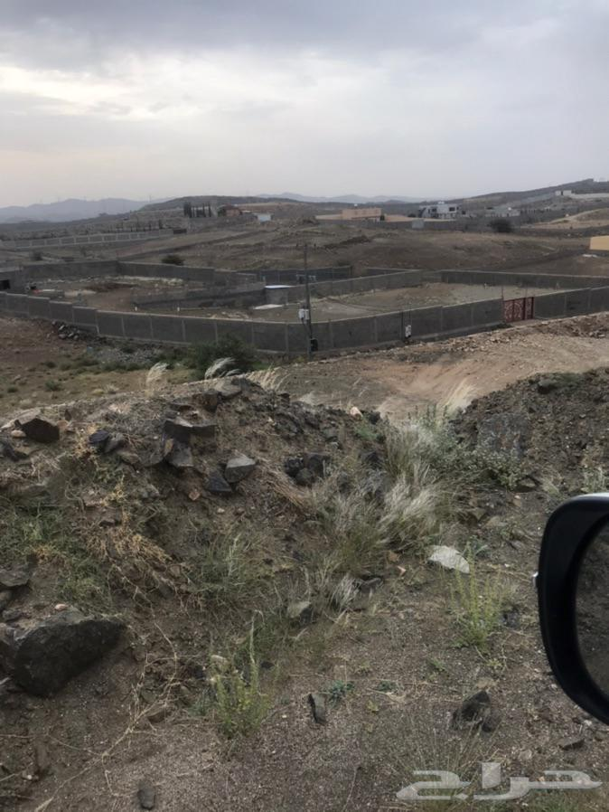 ارض للبيع مساحتها 1600 في خميس مشيط