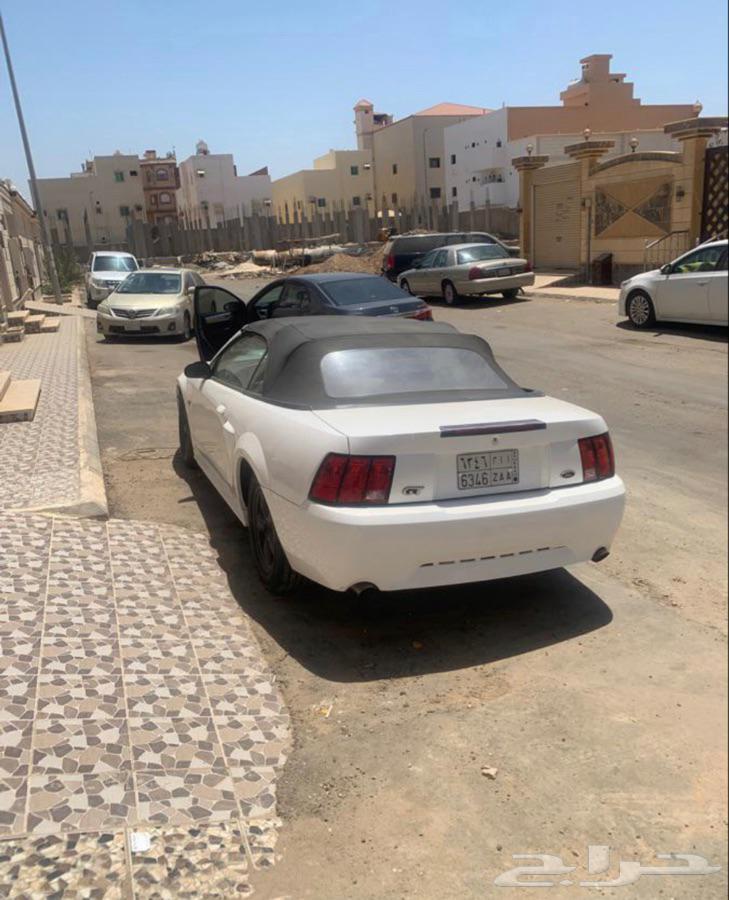 موستنج GT 2003