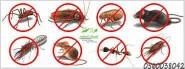 شركه مكافحة الحشرات بالمدينة المنورة