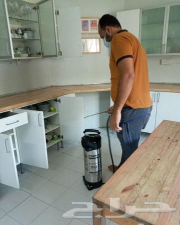 شركة رش حشرات بمكة رش صراصير بق العتة الارضة