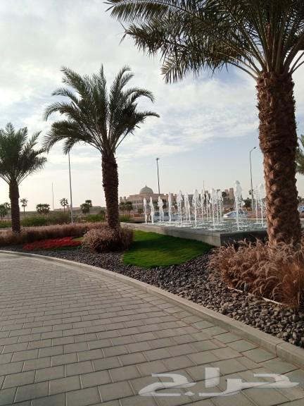 مندوب توصيل طلبات داخل الرياض وخارج الرياض