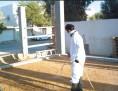 شركه مكافحة حشرات ونظافة عامه وعزل خزانات جده