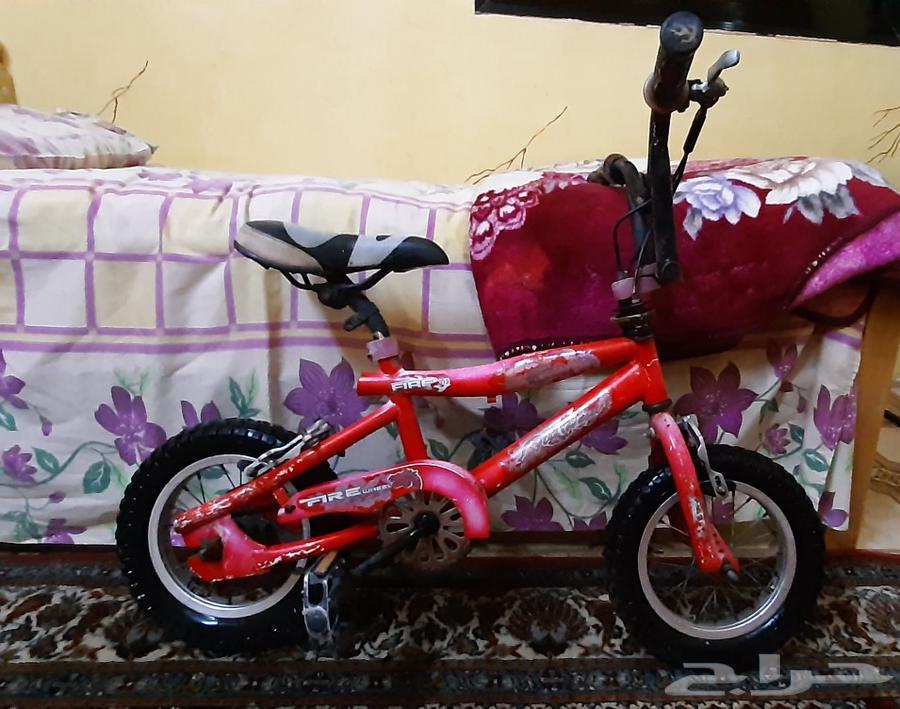 دراجة كوبره للبيع