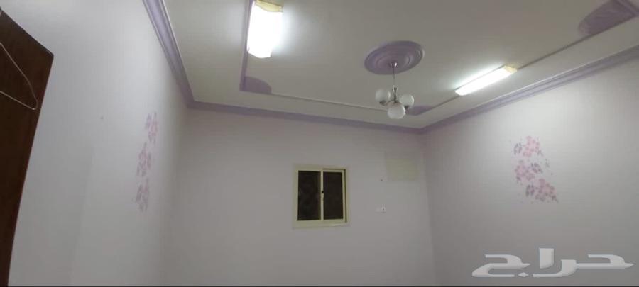 شقة ايجار شهري دور أول - حي البريدي - خميس مشيط