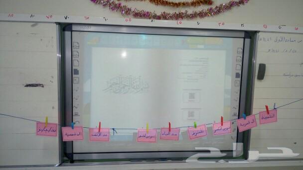مدرس خصوصي صفوف أولية مصري