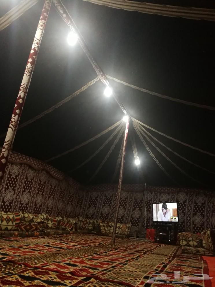 مخيم الأصيل للايجار اليومي