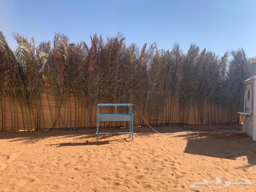 مخيم نفود الثمامه للايجار اليومي