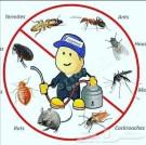 شركة رش مبيدات ومكافحة حشرات بجده