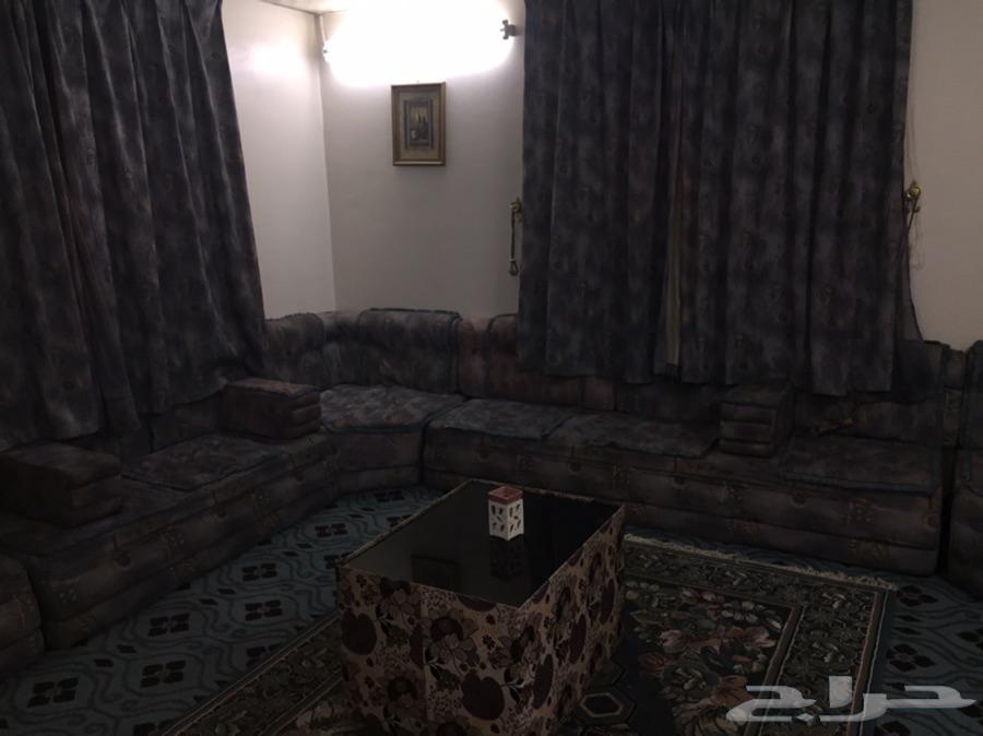 شقة مفروشة دور وملحق وسطح
