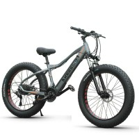 دراجة كهربائية ضمان سنه كمية محدود