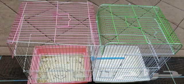 توصيل طيور وحيوانات اليفة