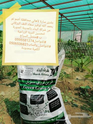 مشتل السراج بمحافظة أضم