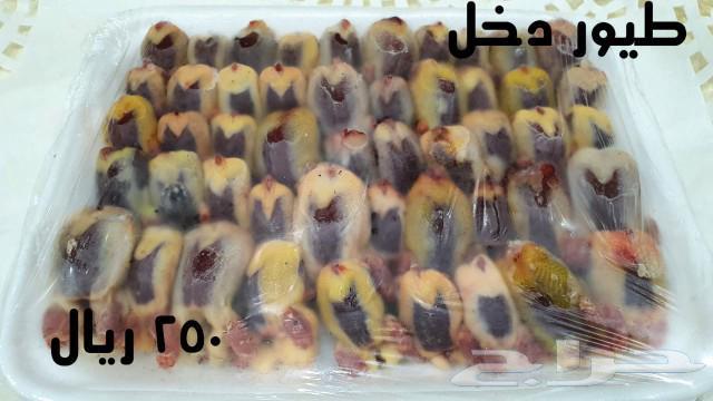 طيور دخل للبيع مدينة جدة