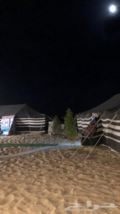 مخيم الفارس للايجار ب اليومي