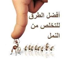 رش مبيد الصراصير والنمل و بق الفراش مع الضمان