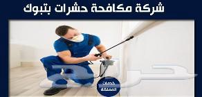 شركة نظافة تبوك الوكيل