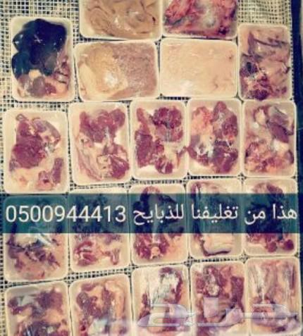 ذبايح اغنام مدينة الرياض10