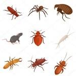 شركة رش مبيدات مكافحة حشرات صراصير نمل بق