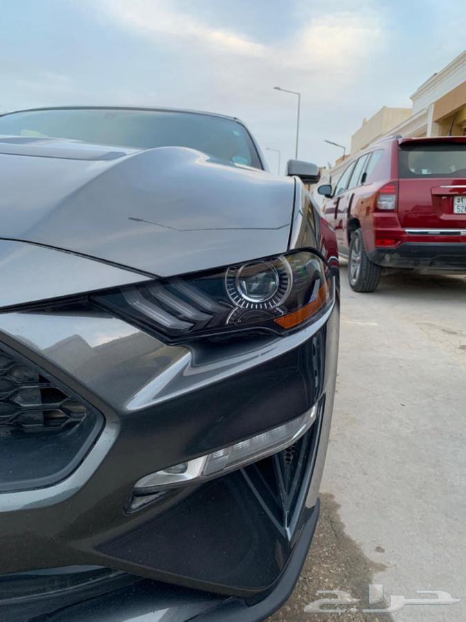 موستنق 2019 Mustang