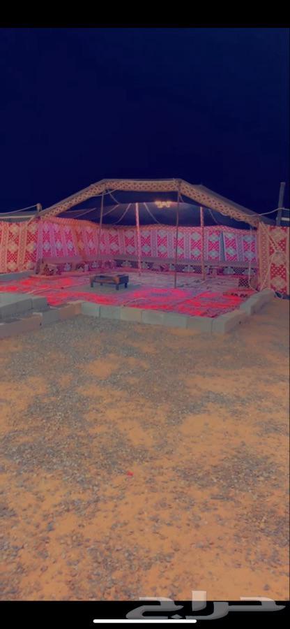 مخيم للإيجار مخيم القمر