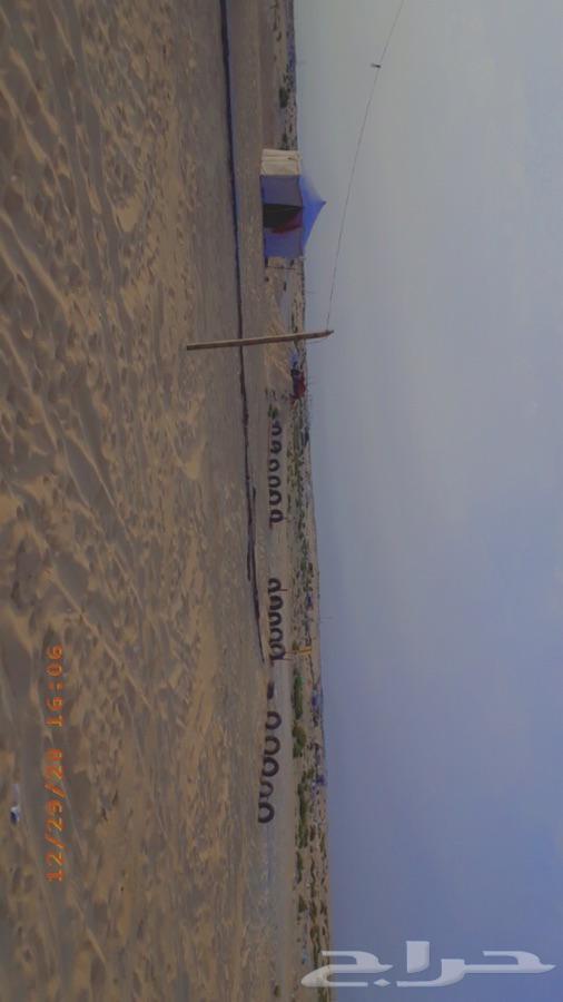 مخيم أضاميم للايجار طريق الرياض بعدبتروهلا يسار