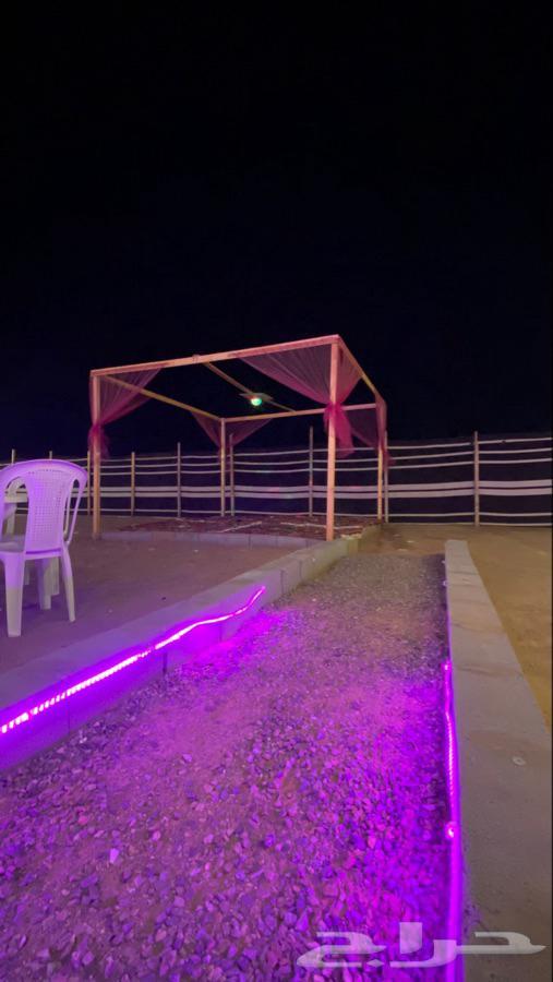 مخيم الحجاز يرحب بكم من جديد مع خصم جديد