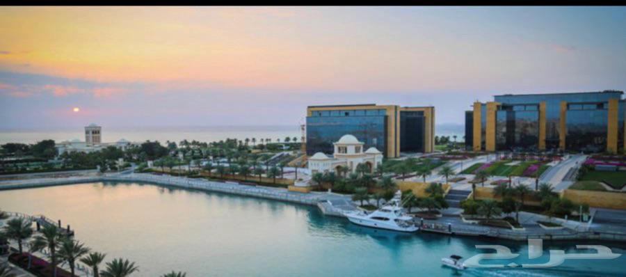 حراج العقار | شقق للايجار في مدينة الملك عبدالله الاقتصادية