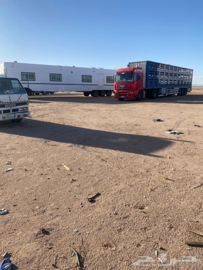 نقل غنم تيدر ثلاث ادوار 18 متر