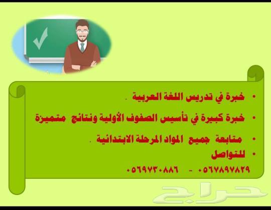 معلم لغة عربية وتأسيس الصفوف الأولية ومتابعة