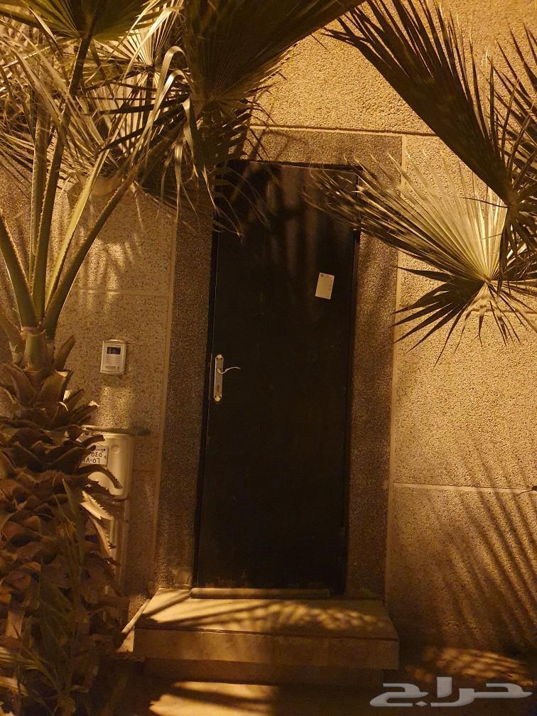 غرفة سائق نظيفه للايجار حي النرجس بالرياض